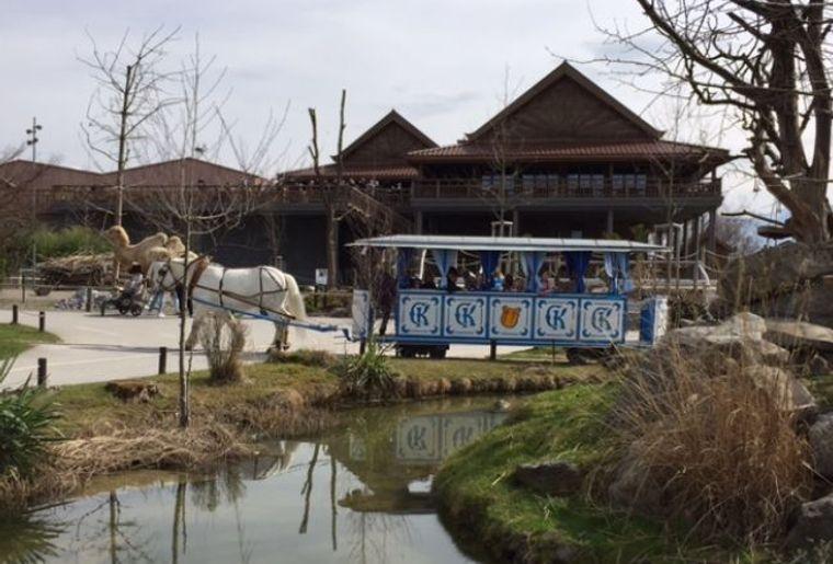 Tierparks_Knies_Kinderzoo1.jpg
