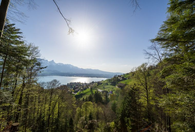 Thun-Sigriswil_III - Copyright visualimpact.ch - Reto Nyffenegger.jpg