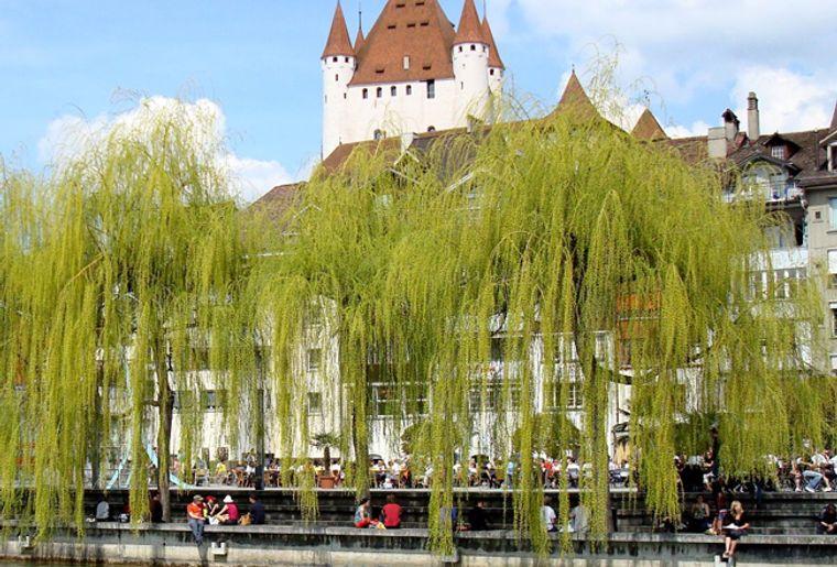 Schloss_Thun4_red.jpg