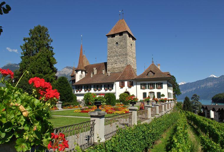 Schloss_Spiez2.jpg