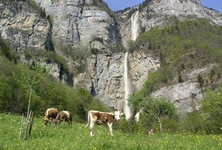 Seerenbachfälle_Betlis.jpg