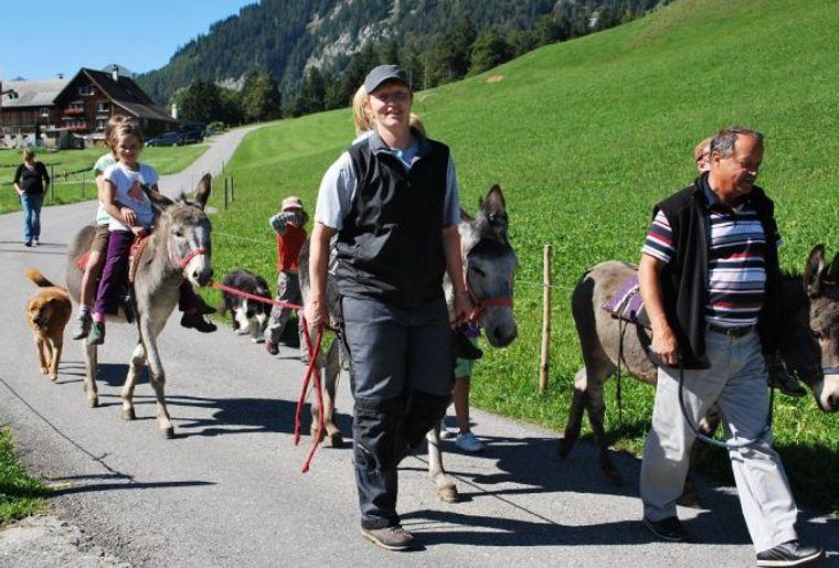 Esel-Wanderung1.jpg