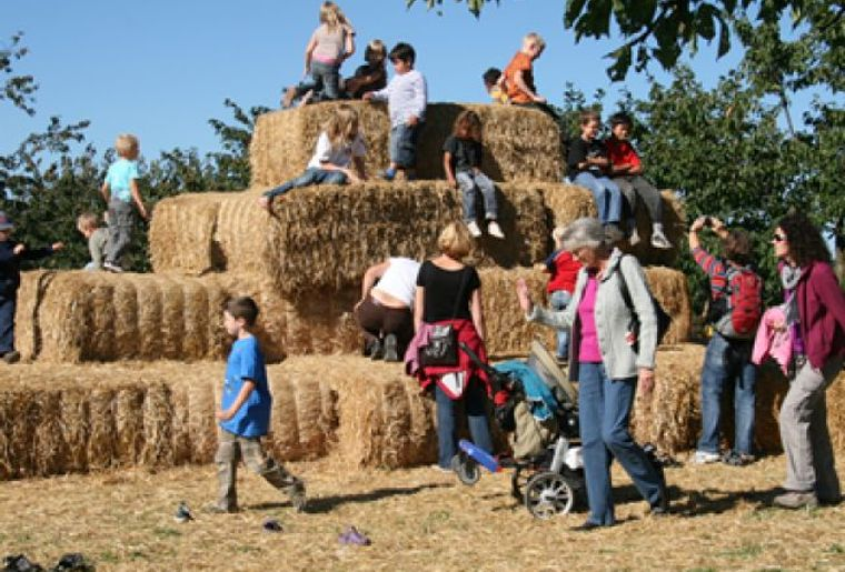 Jucker_Farm_Seegraeben1.jpg