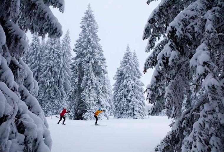 Skilanglauf im Jura
