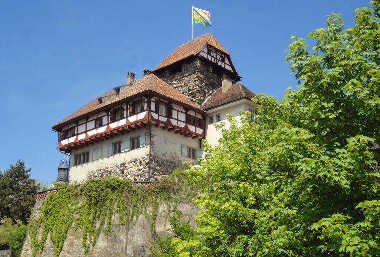 Schloss_Frauenfeld_neu_quer.JPG