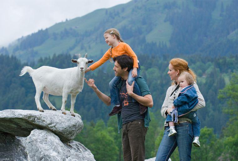 ©Stiftung Alpenruhe.jpg