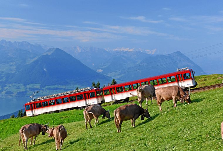 Copyright by Rigi Bahnen - Swiss Travel System By-Line swiss-image.ch - Christian Perret.jpg
