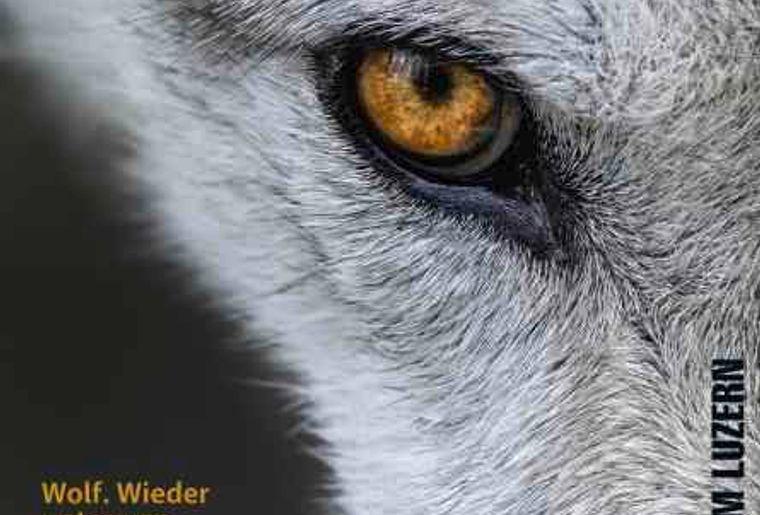 2018_Plakat_Wolf_web.jpg