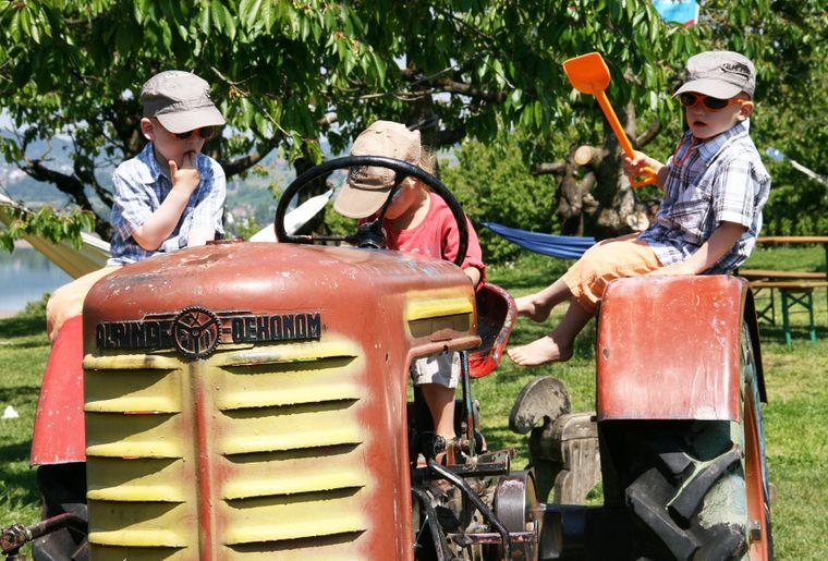 Kinder auf Traktor_Jucker Farm.jpg