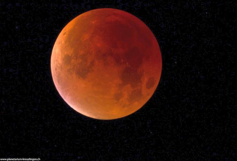 Bild Mars in Opposition.jpg