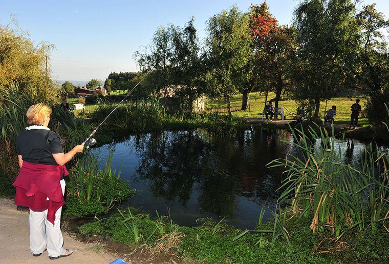 Fischen am Teich.jpg