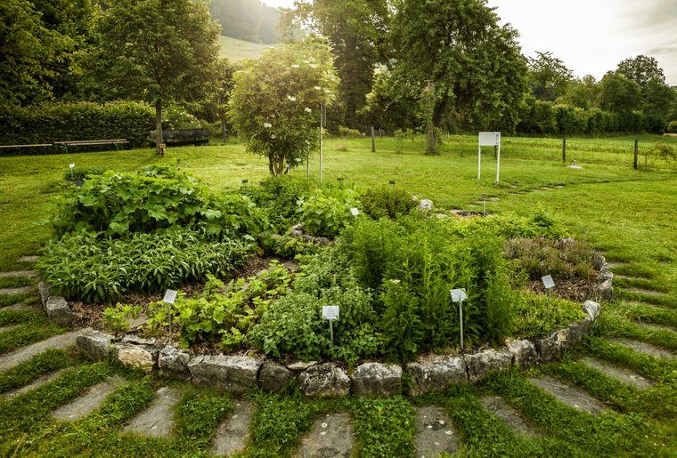 Ricola_Herb-Garden_Nenzlingen_01.jpg
