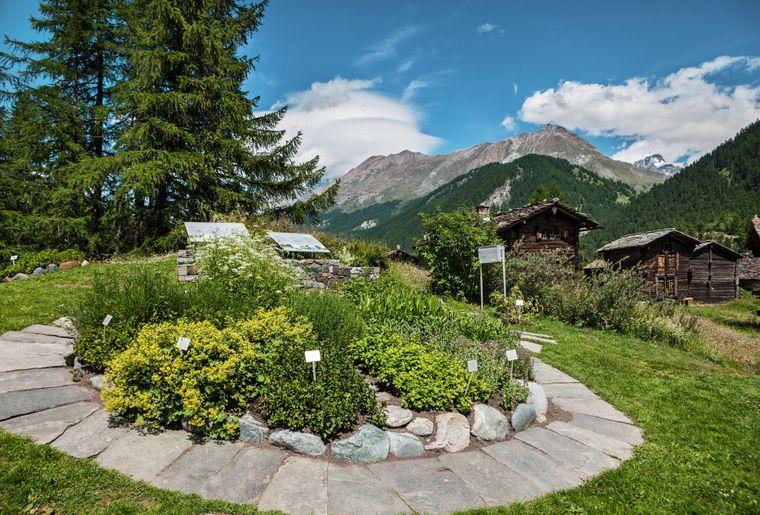 Ricola_Herb-Garden_Zermatt_01.jpg