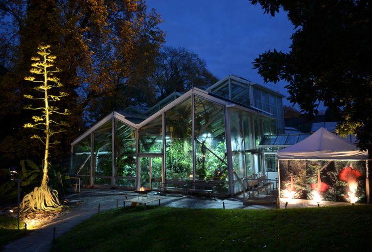 Agave und Tropenhaus während der Titanwurz-Blüte c Botanischer Garten, Universität Basel.jpg