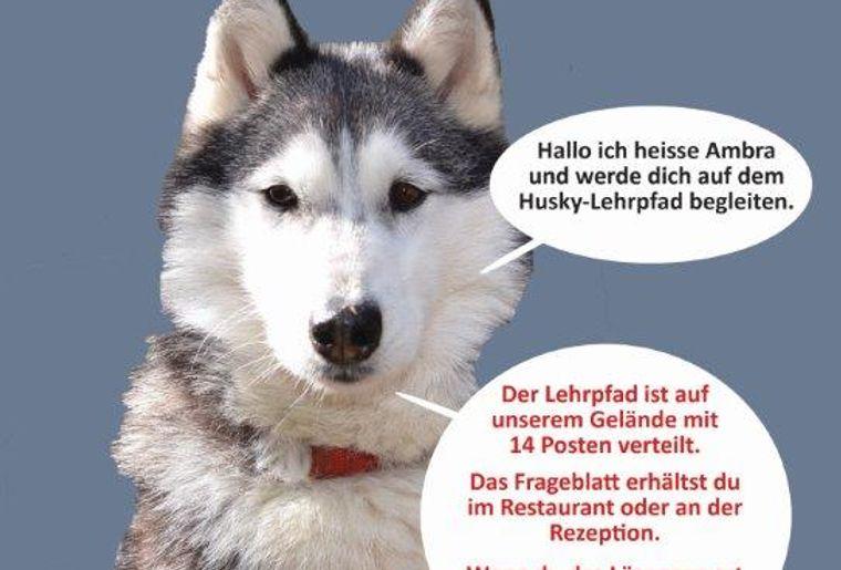 Husky Lehrpfad 1.jpg