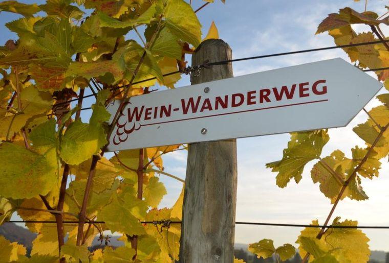 20180830_Weinwanderweg_Wegweiser_©Baumgartner Weinbau.jpg