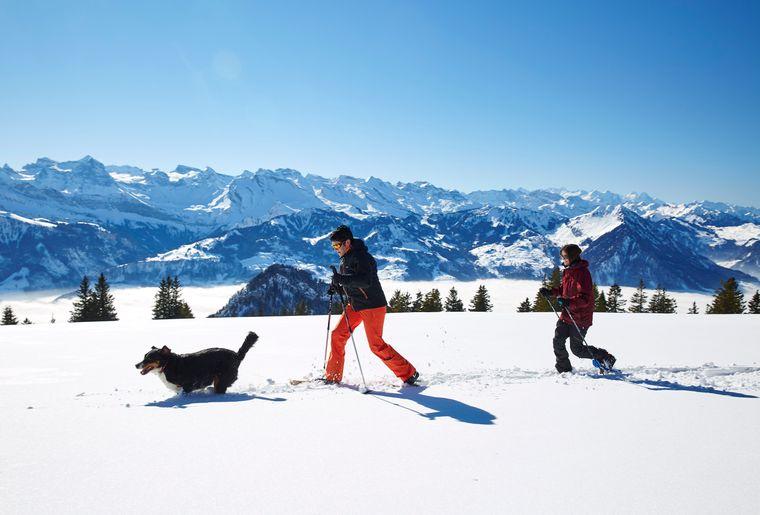 Schneeschuh-Touren.jpg