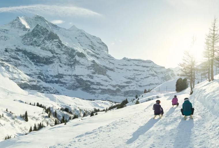 Fox Run Jungfrau Region.PNG