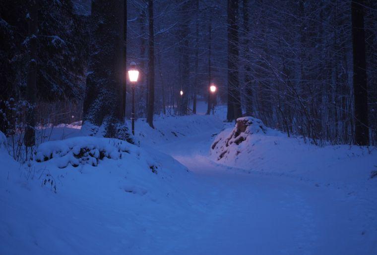 Laternenweg Uetliberg.jpg