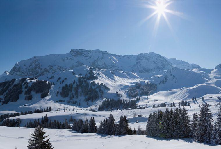 Winterwandern_1.jpg