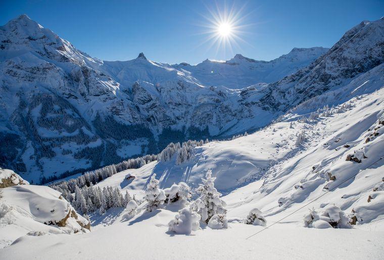 Winterwandern_2.jpg