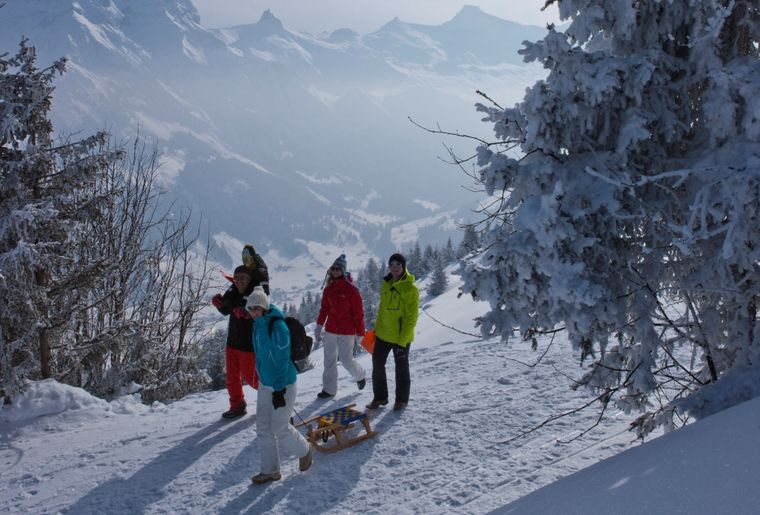 Winterwandern_3.jpg