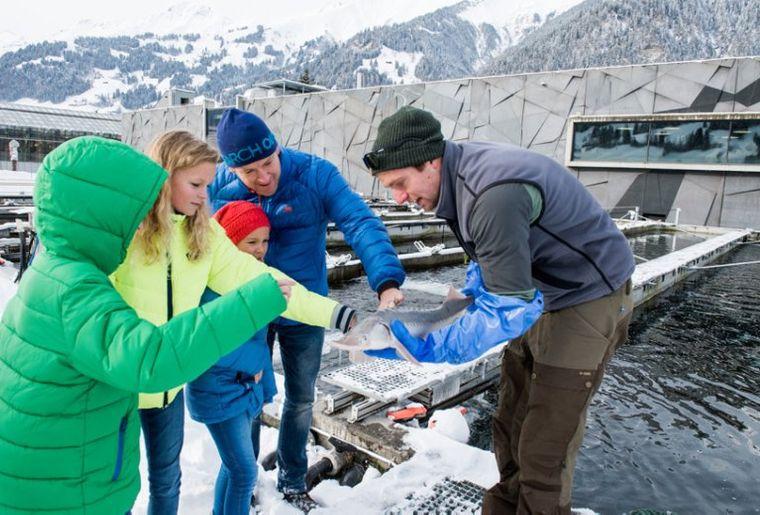 Erlebnisführung Fischfütterung.jpeg