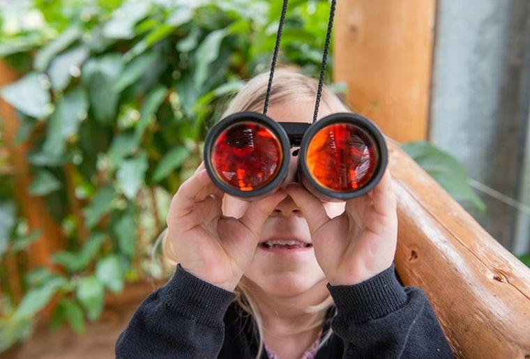 Entdeckertour für Kids im Tropenhaus Frutigen