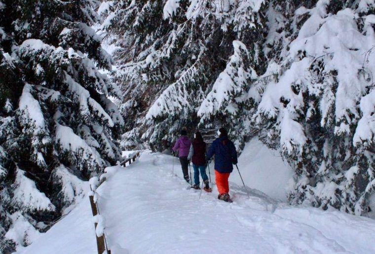 Schneeschuhwanderung Bisse du Milieu.jpg