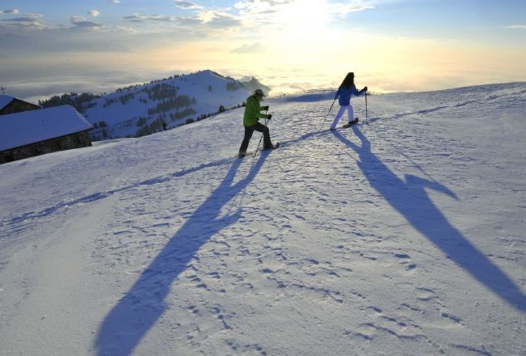Schneeschuhtour Rigi.jpg