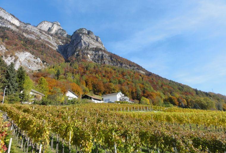 Weinbauweg Sargans-Mels_f-mc_br-hlt (1).JPG