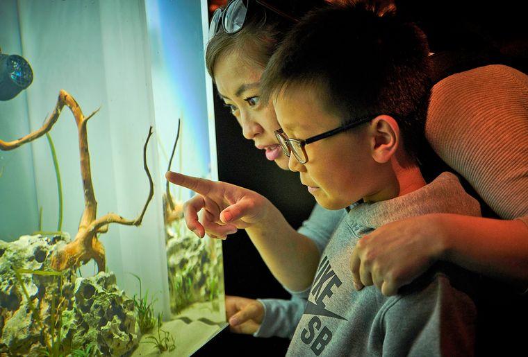 AQA-aquarium-maman-enfant-©sedrik-nemeth-CMJN.jpg