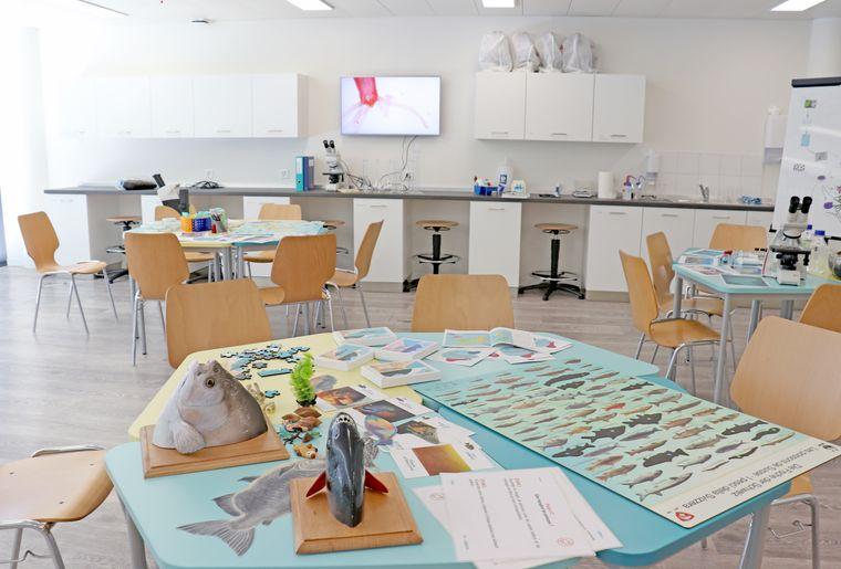 AQA-salle-pedagogique-2-RVB.jpg