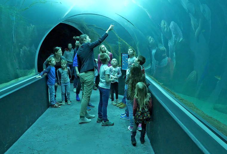 AQA-tunnel-mediatrice-enfants-©NVP3D-CMJN.jpg