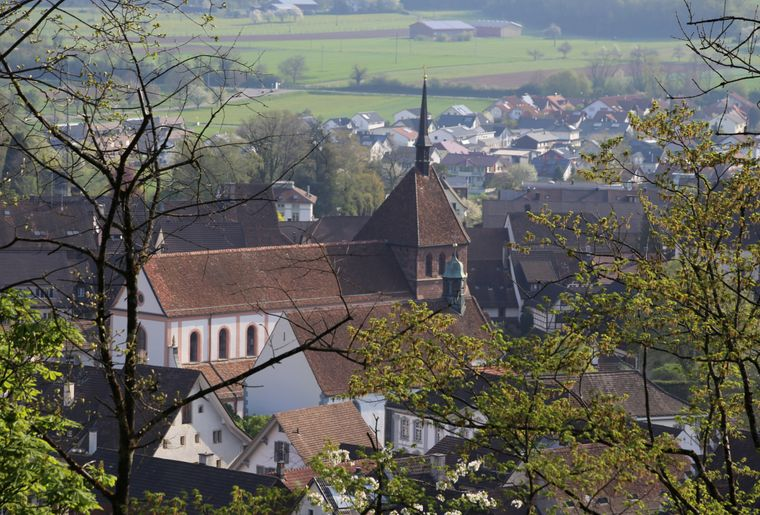 Bad Zurzach_Verenamünster_copyright Bad Zurzach Tourismus.jpg