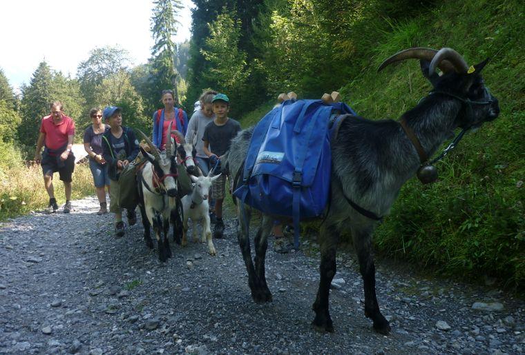 Trekking September 16.JPG