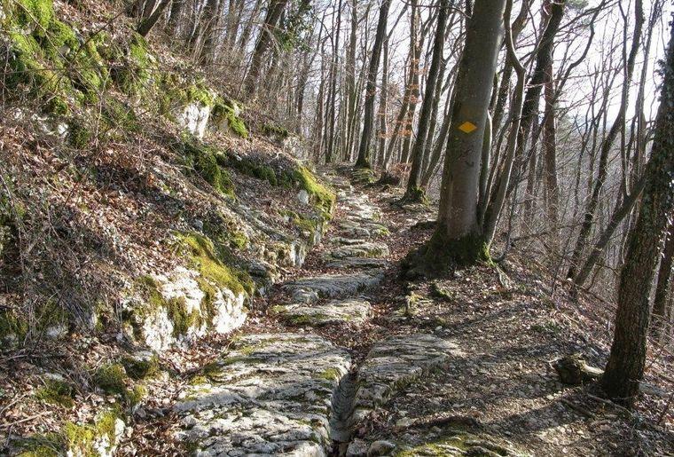 19.04.20_Auf alten Pfaden über den Bözberg.jpg