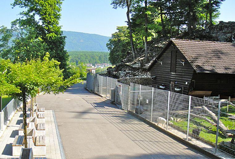 Wildpark Mühletäli c Kyra Bosshardt.jpg