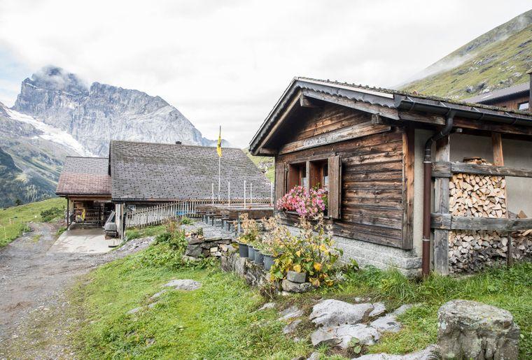Alpkäse Trail Engelberg 5.jpg