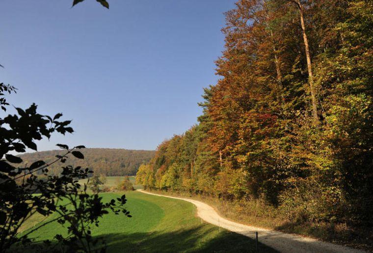 Fricktaler Höhenweg 2.jpg
