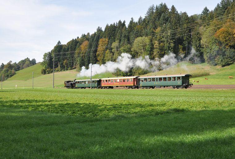 Dampfzug_bei_Schweinbrunnen.JPG