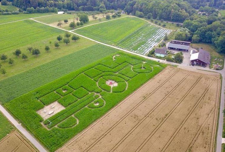 maislabyrinth-umgebung-2018-920x518.jpg