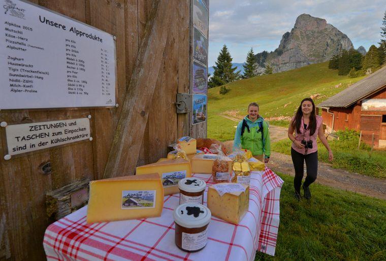 Alpwirtschaft-Käse-degustieren-neu_bearbeitet_2-2048x1152.jpg