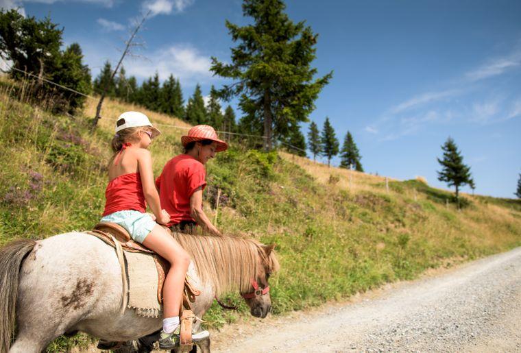 BALADE PONEY equitation_cp-jbbieuville (2).jpg
