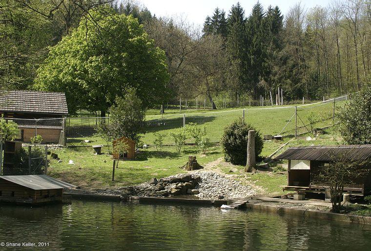 Tierpark Bad Zurzach c Shane Keller.jpg