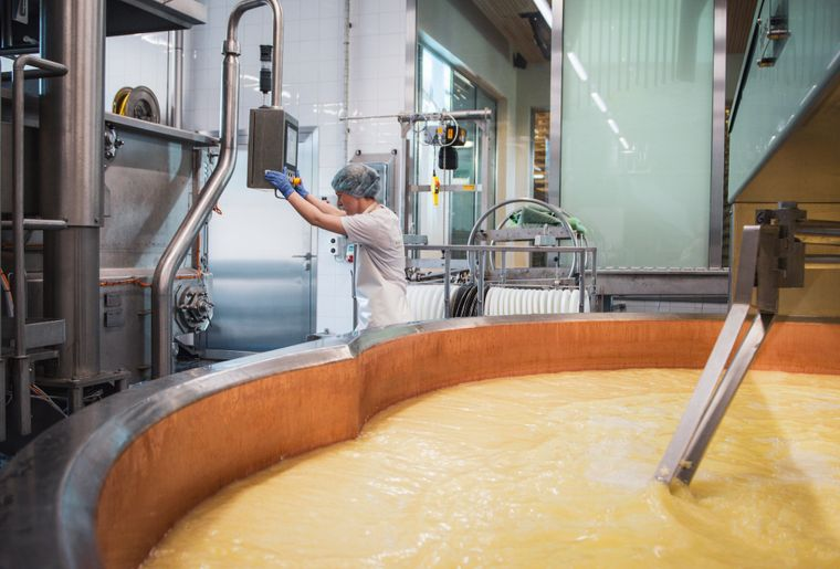 Production fromagere FDFM.jpg