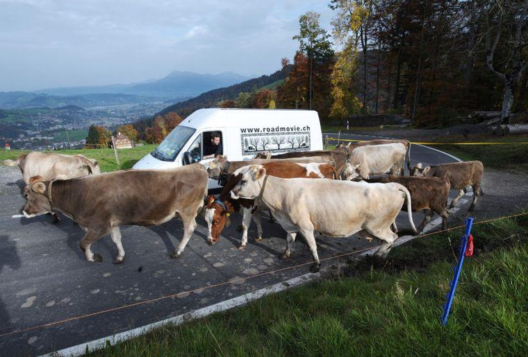 Unterwegs nach Schwarzenberg LU (© Roadmovie Foto Tom Wüthrich).jpg