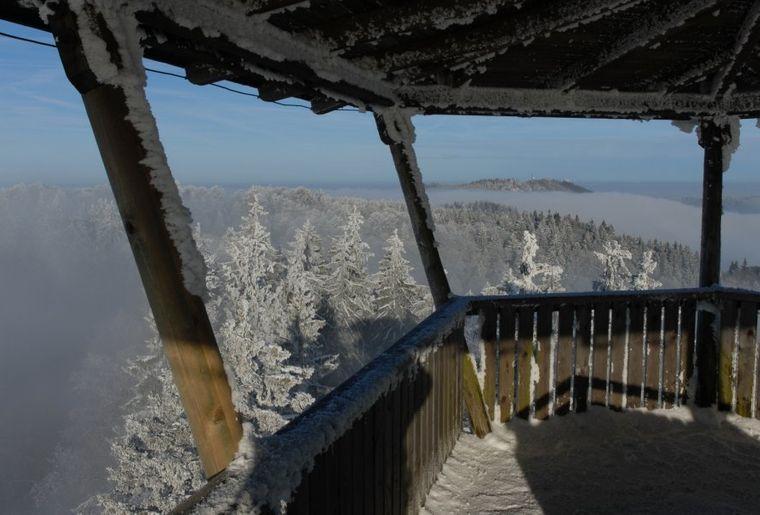 Naturerlebnispark Wildnispark Sihlwald.jpeg
