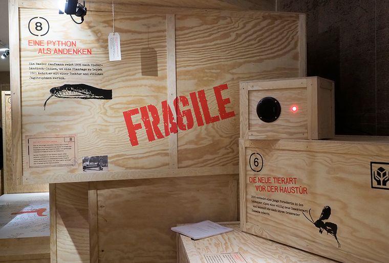 Ausstellung Fragile Naturmuseum Winterthur.jpg