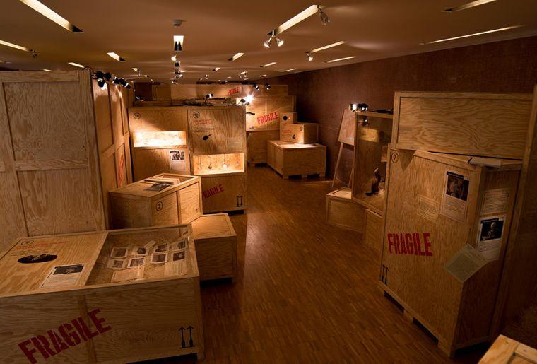 Ausstellung Fragile Naturmuseum Winterthur 2.jpg